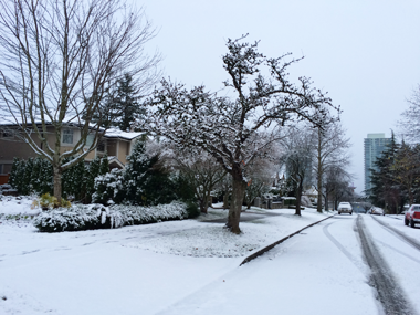 vancouver_snow_2016_1.png