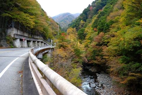06柳沢峠へ
