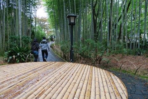 21修善寺竹の小径