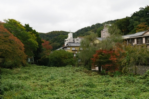 25修善寺の小径