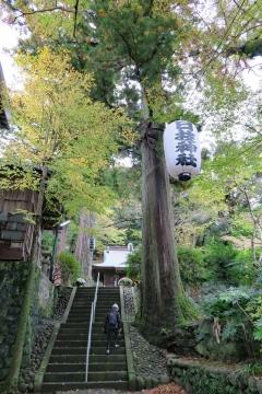 32日枝神社