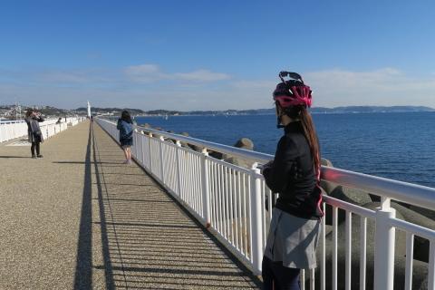 16江の島ビビさん