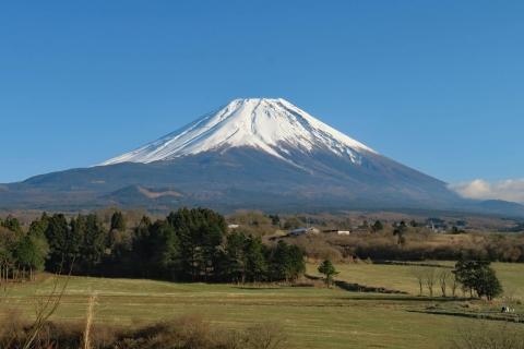 08a富士が嶺