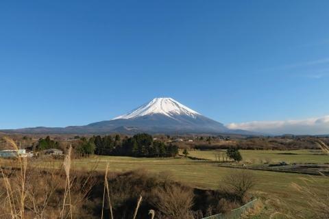 08富士が嶺