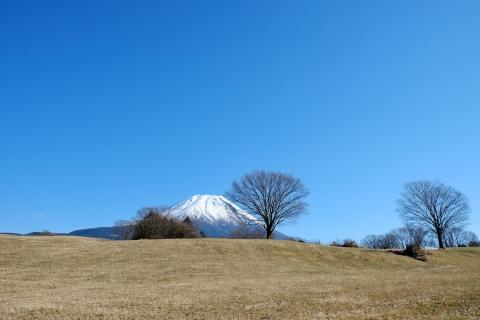 13富士ケ嶺
