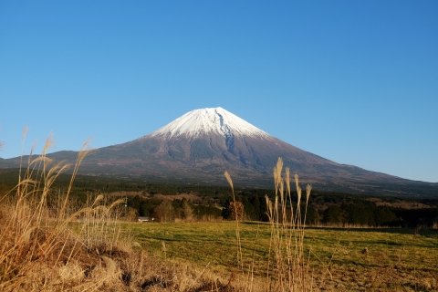 26R139牧草地付近からの富士山