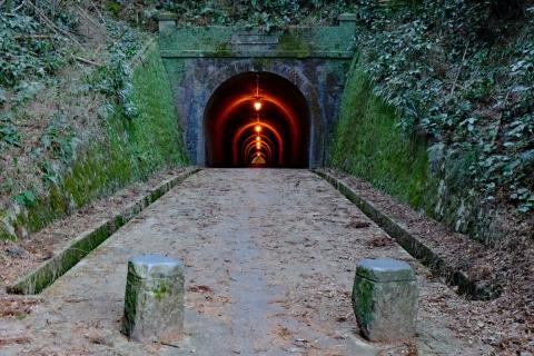 42宇津ノ谷明治のトンネル