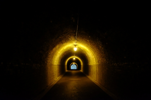 44宇津ノ谷明治のトンネル