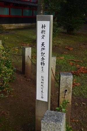 20161112茨城百景 化蘇稲荷神社19