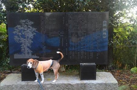 20161112茨城百景 馬場観音25