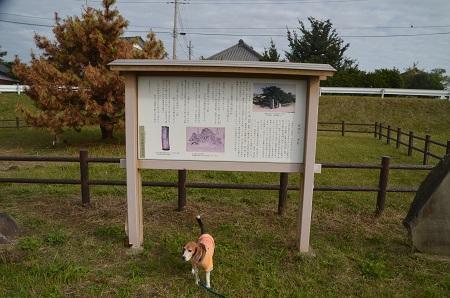 20161112茨城百景 高須崎の一本杉02