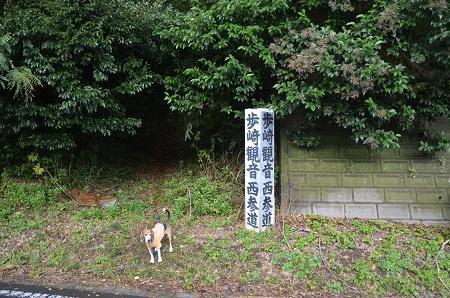 20161112茨城百景 歩崎21