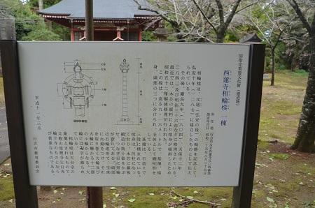 20161112茨城百景 西連寺16