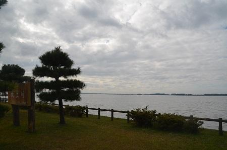 20161112天王崎公園06