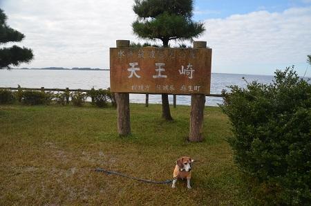 20161112天王崎公園03