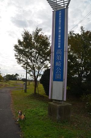 20161112高須崎公園06