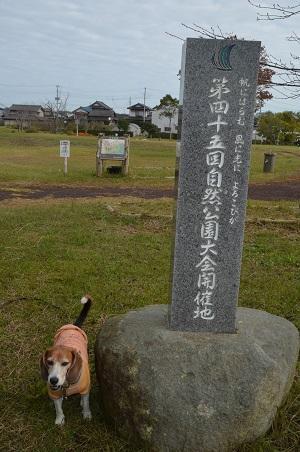 20161112高須崎公園14