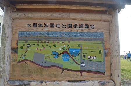 20161112歩崎公園0102