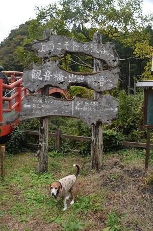 20161116養老渓谷八景 観音橋・出世観音04