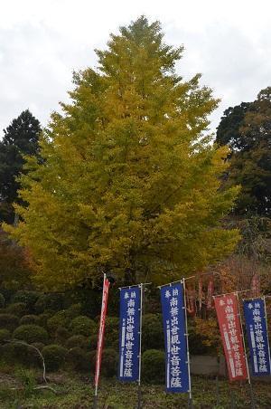 20161116養老渓谷八景 観音橋・出世観音24