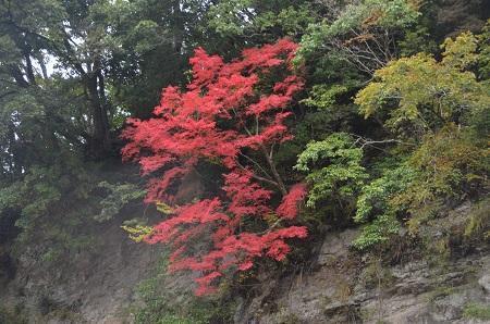 20161116養老渓谷八景 懸崖鏡08