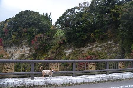 20161116養老渓谷八景 懸崖鏡14