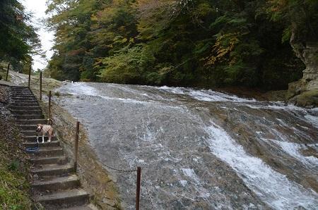 20161116養老渓谷八景 粟又の滝18