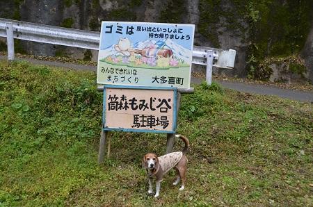 20161116養老渓谷八景 筒森もみじ谷01