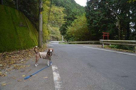 20161116老川小学校小沢又分校跡01