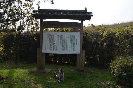 20161120関宿城址15
