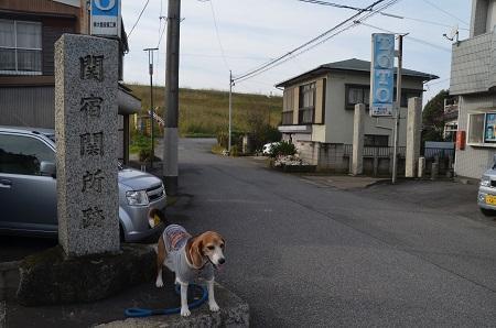 20161120関宿城址26
