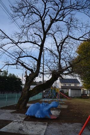 20161120豊岡小学校12