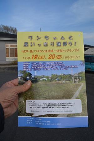 20161120豊岡小学校17
