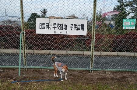 20161120豊岡小学校15