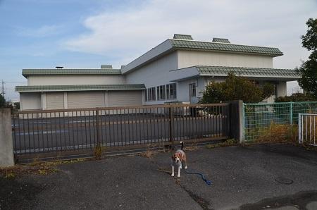 20161120桜井小学校12