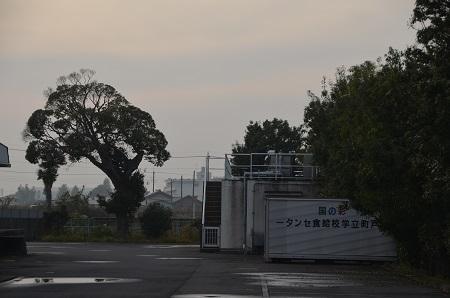 20161120桜井小学校10