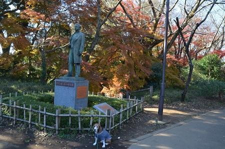 20161202佐倉城址公園11