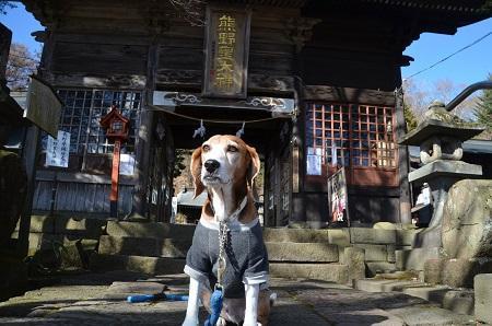 20161206熊野神社10