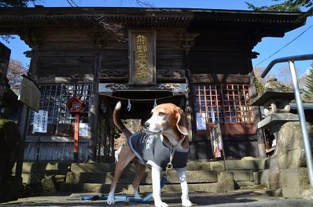 20161206熊野神社09