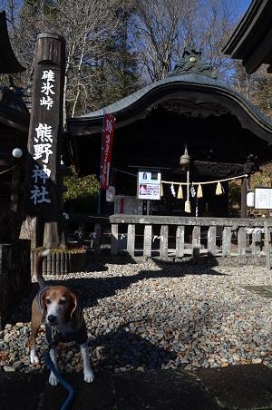 20161206熊野神社13