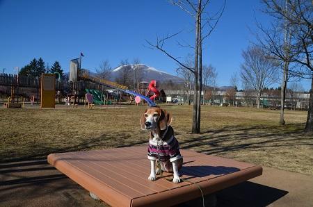 20161207湯川ふるさと公園18