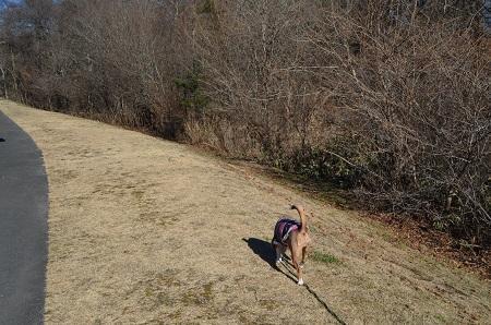 20161207湯川ふるさと公園16