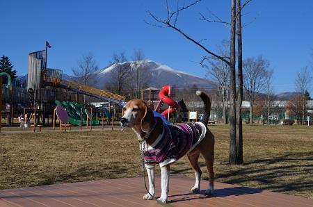 20161207湯川ふるさと公園17