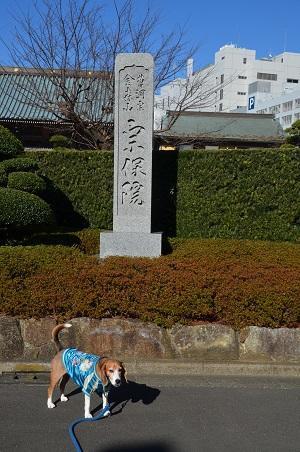 20170101町田七福神②布袋尊01