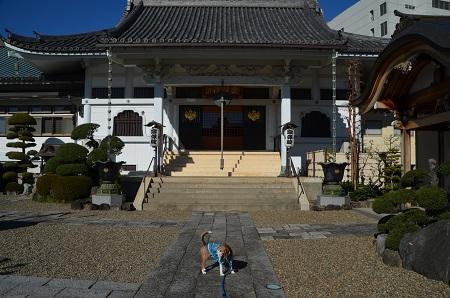 20170101町田七福神②布袋尊09