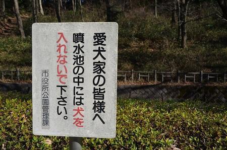 20170101芹ヶ谷公園17