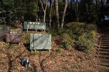 20170101芹ヶ谷公園16