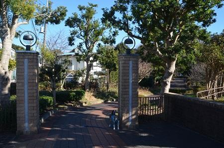 20170101芹ヶ谷公園27