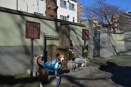 20170101町田七福神⑤毘沙門天11