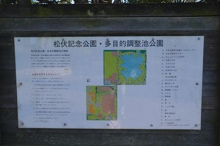 20170111松伏記念公園02